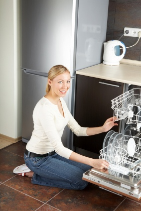 dishwasher repair service request